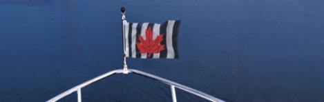 CPS Flag